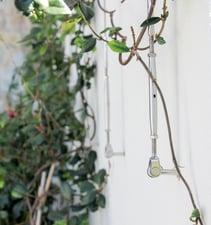 green-wall-bottlescrew