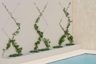 zigzag_pool_scene_2-Green-wall